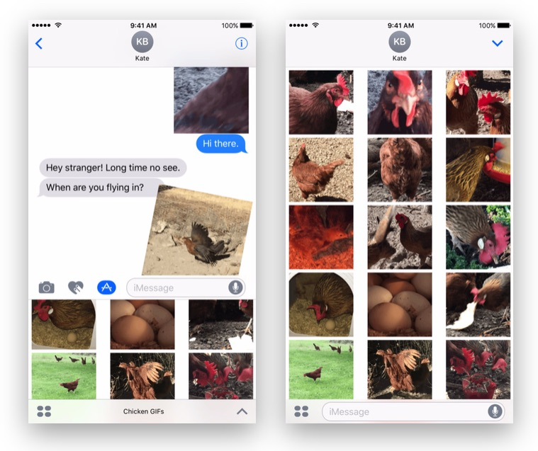 Chicken Feed? No, its Chicken GIFs - The Fun, Animated Stickers for iMessage