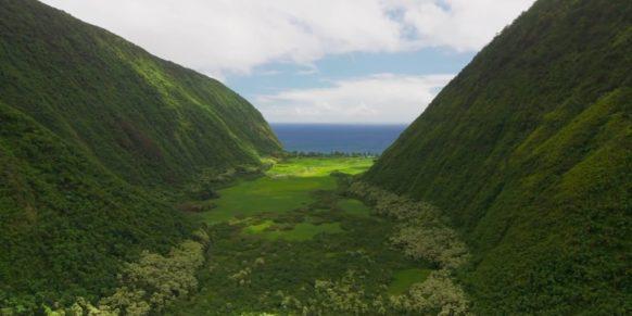 hawaii valley