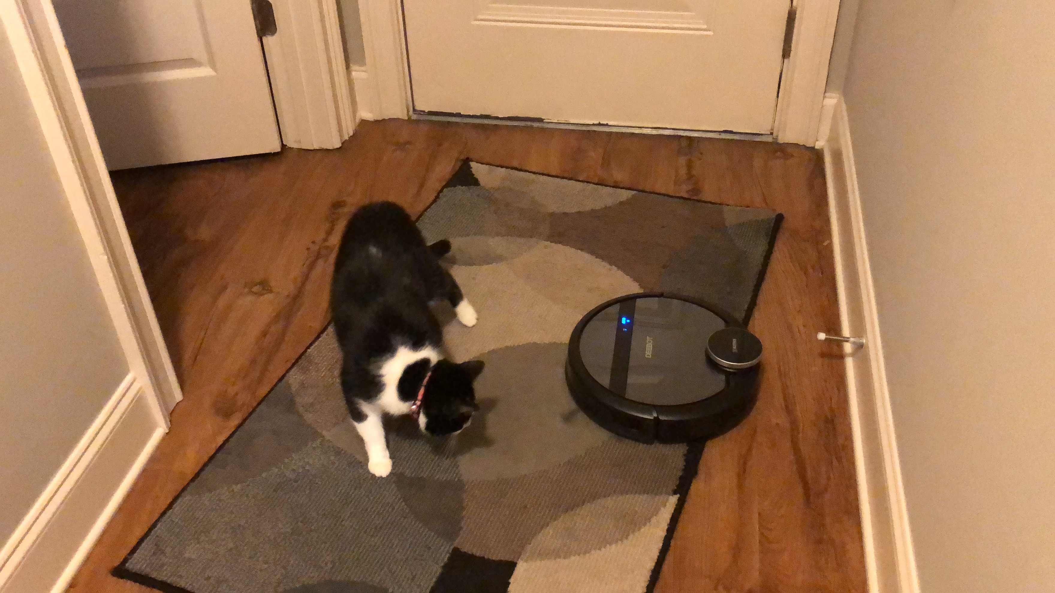 Review: The Ecovacs DEEBOT 901 - Intelligent Robot Vacuuming at a Reasonable Price
