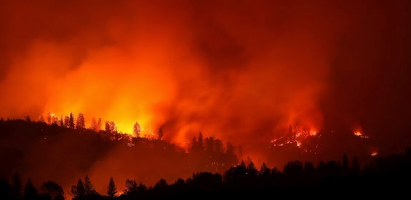Apple to Donate Additional Funds to West Coast Firefighting Efforts
